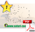 Bild zum Ausmalen, Safari Zoo